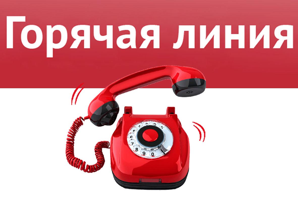 Горячая линия МБУ ДО ЦДТ Канавинского района